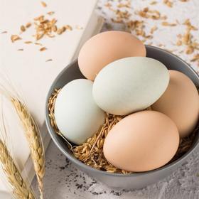 优选| 爱心助农 树下正宗散养鲜鸡蛋 无饲料添加剂 营养健康  30枚 包邮(除偏远地区)