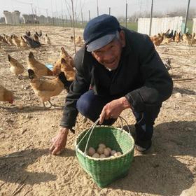 严选| 爱心助农 树下正宗散养土鸡蛋 无饲料添加剂 营养健康  30枚 包邮(除偏远地区)
