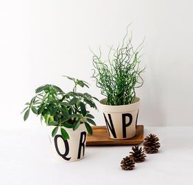纳谷 | Since竹纤维字母花盆