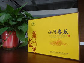 2019年新茶陕西特产白河春燕舞龙尖茶(特种纸礼盒100g)