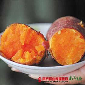 扶贫赣南三百山甜蜜红薯2斤