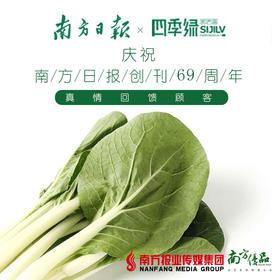 【新鲜可口】四季绿 小白菜  约500g