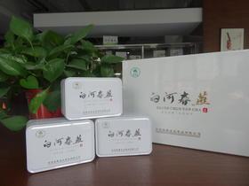2019年新茶陕西特产白河春燕舞龙尖茶(高档木盒204g)