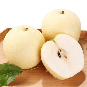 翠王皇冠梨新鲜水果梨子整箱5斤批发包邮当季雪梨砀山梨产地直销