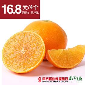 【酸甜多汁】四川爱媛38 橙子 4个 约550g