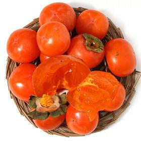 软柿子新鲜水果非甜脆硬柿子火晶柿子新鲜现货5斤包邮