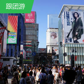 【日本】独享东洋自选东京自由活动6天-11月份
