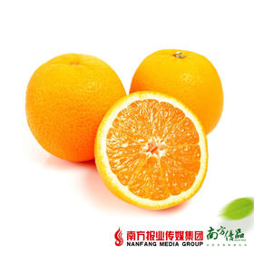 【鲜香多汁】澳洲新奇士甜橙   单个280g左右  2个