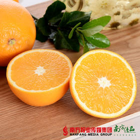 【鲜香多汁】澳洲进口甜橙 4个  单个180g左右