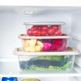 三件套保鲜盒 长方形带盖塑料便当盒带饭盒冰箱冷藏食品盒-863537