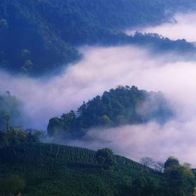 杭州出发:登缥缈峰,徒步山脊仙境,看太湖万顷风光(1天)