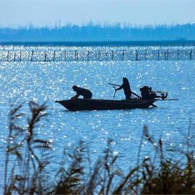 杭州出发:徒步穿越莲花岛,探索阳澄湖大闸蟹发源地+品蟹(1天活动)