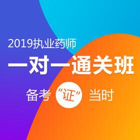 2019年执业药师中药 西药1V1通关班 名师直播+录播视频授课