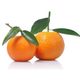 上明柑桔 松滋白龙埂柑橘5斤24-26个薄皮橘子 现摘现发 蜜桔柑桔新鲜水果