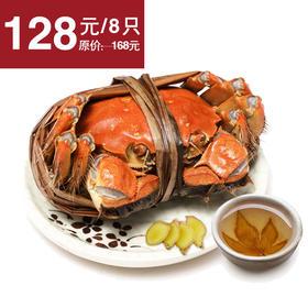 【肥美鲜甜】阳澄湖大闸蟹 3两公4只 2两母4只