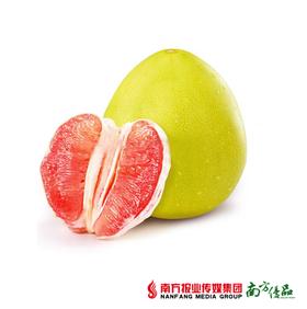 【酸甜爽口】福建平和红柚  单果2.5斤±3两  1个