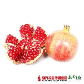 【清甜多汁】四川会理突尼斯软籽石榴 1个 约280g/个