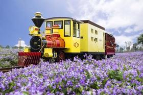 【2号车】甜蜜!畅玩梦幻乐园,巧克力小镇一日游!