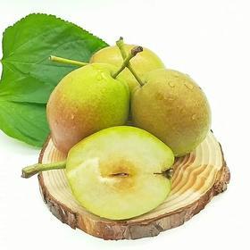 新鲜红香酥梨当季新鲜香梨5斤媲美库尔勒香梨
