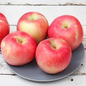 陕西红富士 苹果 新鲜味美 清脆多汁 酸甜可口4.5斤  9枚包邮