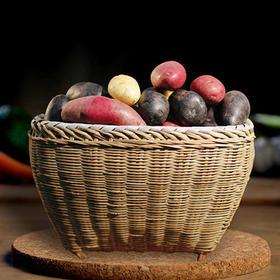 【积分兑换高山黑红黄心迷你土豆】原生态土豆届的双子星