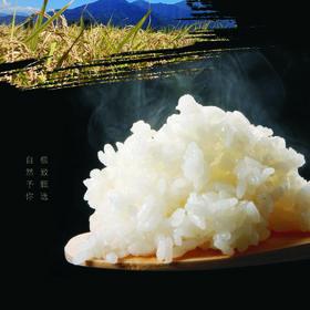 精选 | 吉林长粒香大米 当季新米 科学种植 粒粒饱满 米香四溢 10斤装