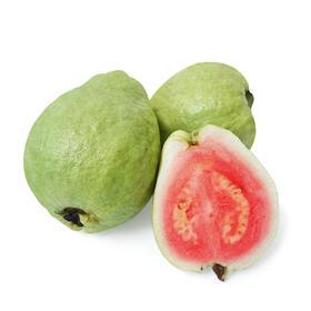 【红心芭乐5斤】| 果园直供,美味正当食