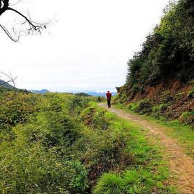 11.9徒步穿越宁波的'茶马古道',探索千年古村的旧时光(1天活动)