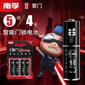 南孚i掌门智能门锁密码锁电子锁指纹锁专用电池4粒装5号碱性家用-864653