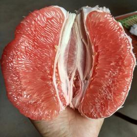 叁陆玖 平和红心柚(4支/4500Kg左右)