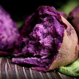 农家自种现挖大红薯紫薯五斤装