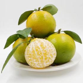 【皇帝贡柑5斤】| 皮薄肉嫩,清甜爽滑