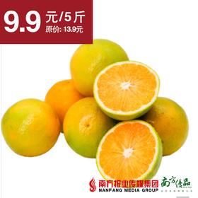 【皮薄香甜】湖南麻阳冰糖橙   5斤±3两