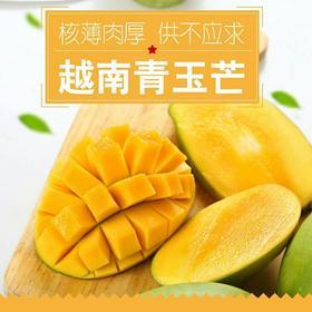 越南青玉芒果整箱10斤当季水果批发包邮新鲜特大青黄皮芒果新鲜