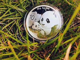 2019年熊猫30克银币