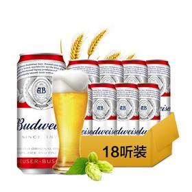 百威啤酒听装 500mlx18听 百威啤酒
