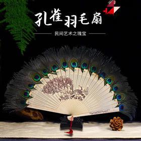 「儋州」孔雀扇/1把-芃虹农业科技有限公司的孔雀扇
