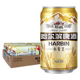 哈尔滨 小麦王啤酒 330ml24听