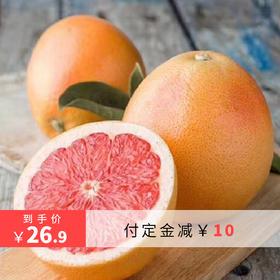 南非红西柚6颗,调节人体新陈代谢,富含特殊果酸哦!定金翻倍爽!