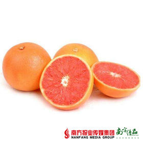 【酸苦美味】南非西柚 单果约200-250g  3个