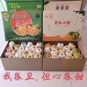 「白沙」红心橙-白沙富涵实业有限公司