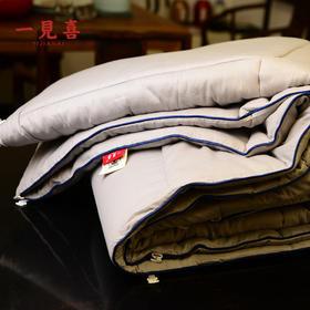 一见喜100%新疆纯棉绗缝冬被 无网棉胎+纯棉布 松软贴身好睡眠