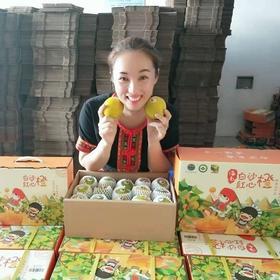 「白沙」白沙红心橙-白沙县七坊镇的扶贫产品