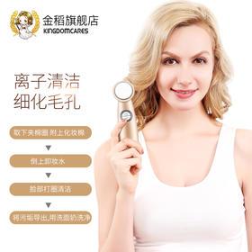 金稻导入仪美容仪器家用脸部离子导出面部排毒美肤按摩毛孔清洁器