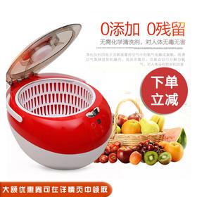 锐智洗菜机家用果蔬清洗机臭氧机全自动活氧水果蔬菜解毒机去农药