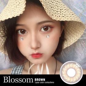 HP  BLOSSOM系列【DV】【精选】