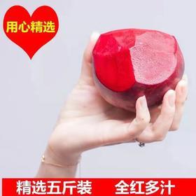 """【甜根菜】农家甜根菜/药食同源的""""宝物""""/治疗血液疾病的重要药物"""