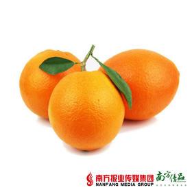 【进群专享】江西赣南脐橙  果径80-85mm  2斤±3两