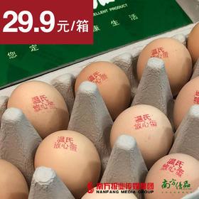 【温氏知名品牌】温氏放心鸡蛋 30枚/托