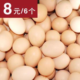 【美味营养】壹号土鸡初生蛋 6个/盒
